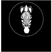 logo_zebratex